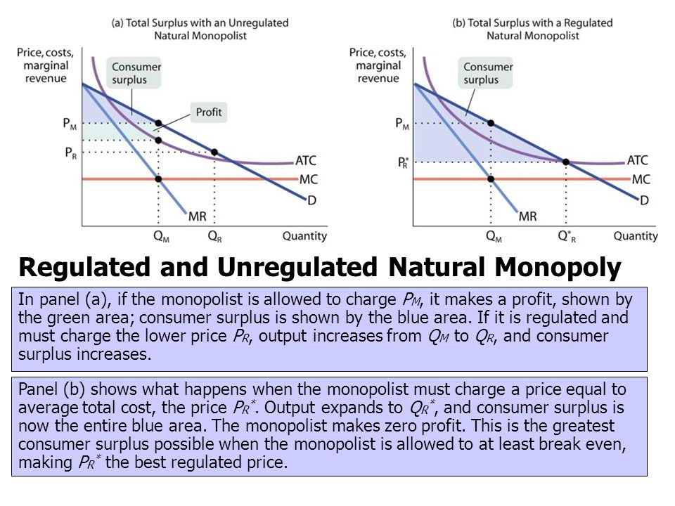 Regulated and Unregulated Natural Monopoly