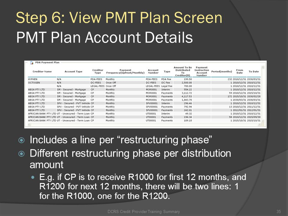Step 6: View PMT Plan Screen PMT Plan Account Details