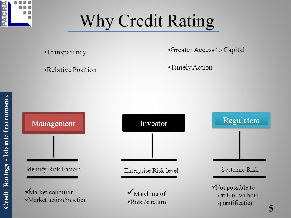 Why Credit Rating Regulators Management Investor Matching of