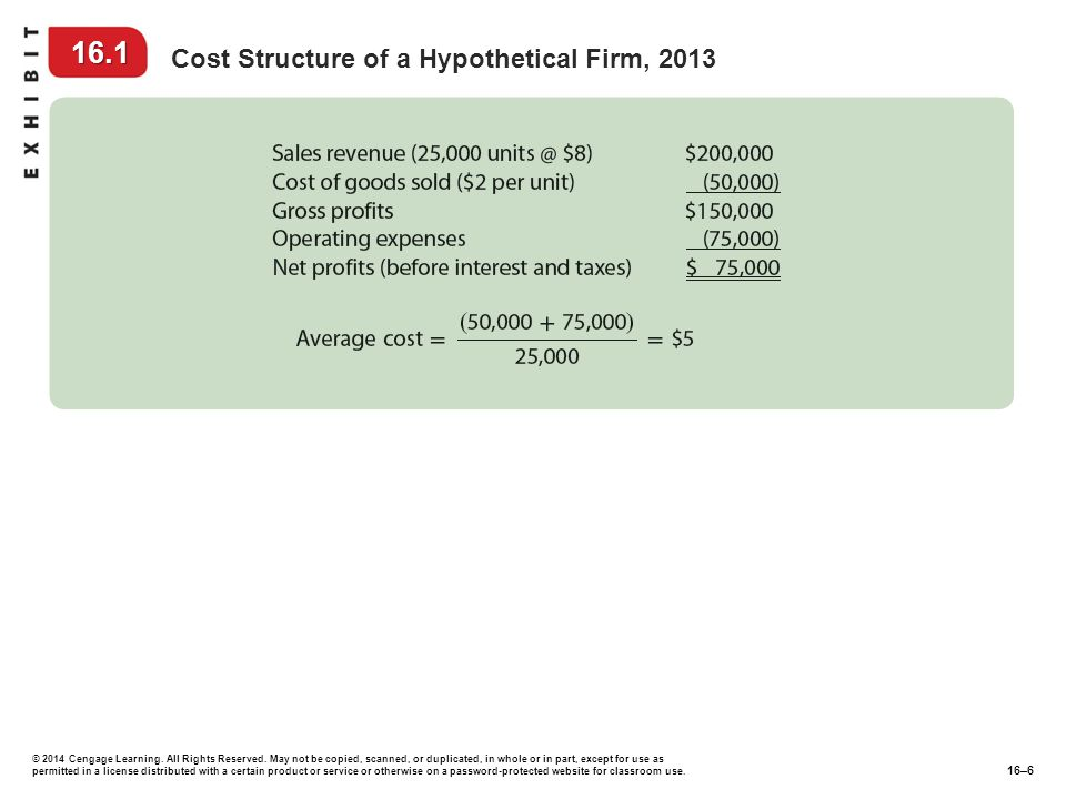 16.1 Cost Structure of a Hypothetical Firm, 2013