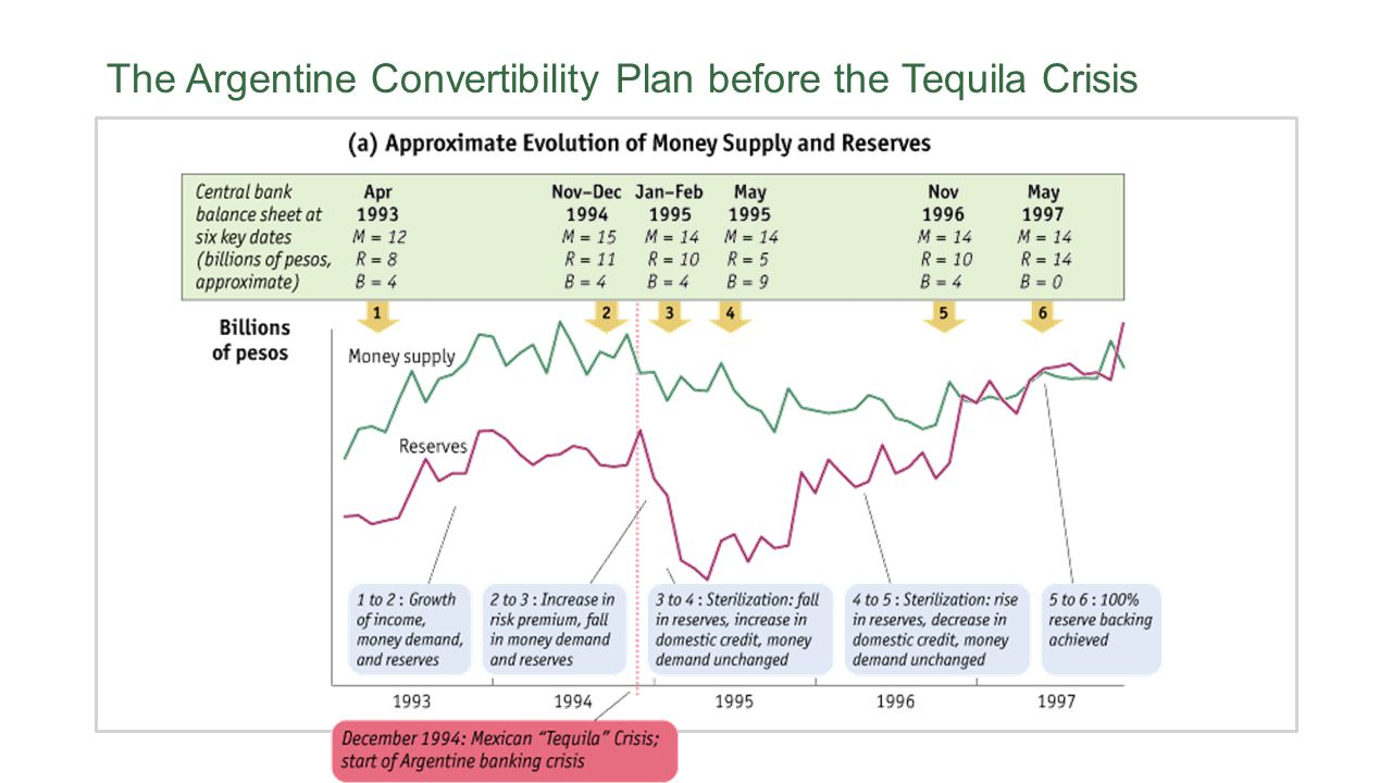 The Argentine Convertibility Plan before the Tequila Crisis