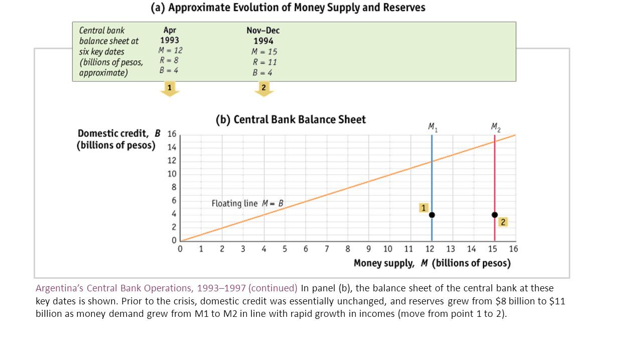 Argentina's Central Bank Operations, 1993–1997 (continued) In panel (b), the balance sheet of the central bank at these key dates is shown.