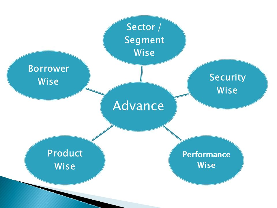 Sector / Segment Wise Security Wise Product Wise Borrower Wise