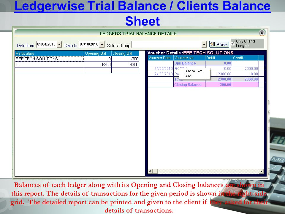 Ledgerwise Trial Balance / Clients Balance Sheet