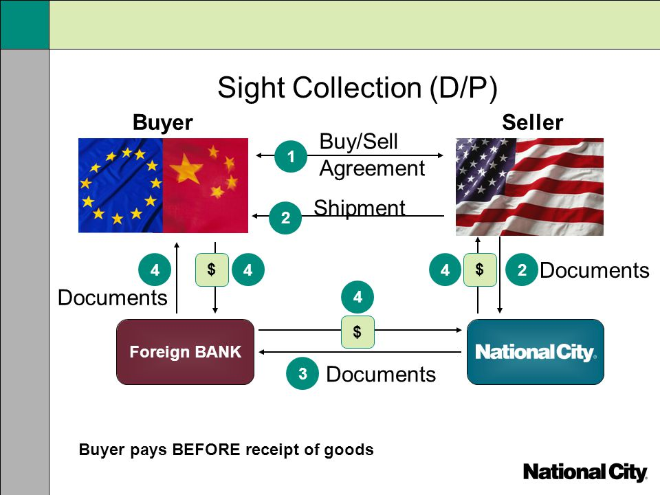 Sight Collection (D/P)