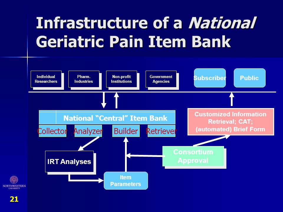 Infrastructure of a National Geriatric Pain Item Bank