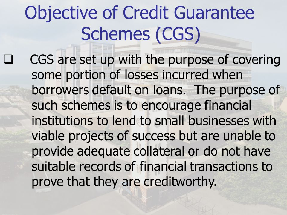 Objective of Credit Guarantee Schemes (CGS)