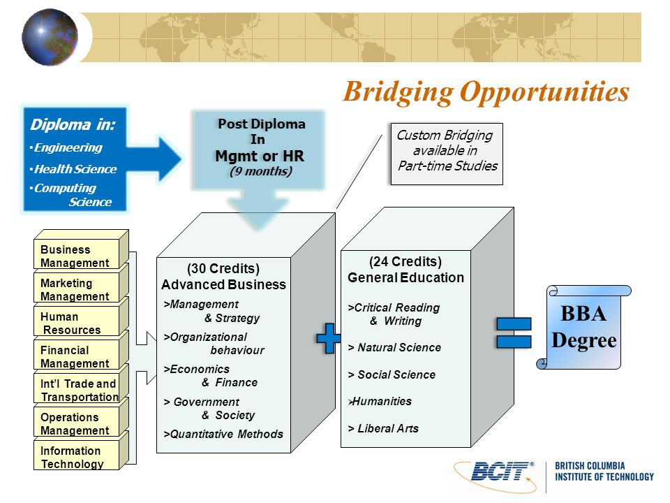 Bridging Opportunities