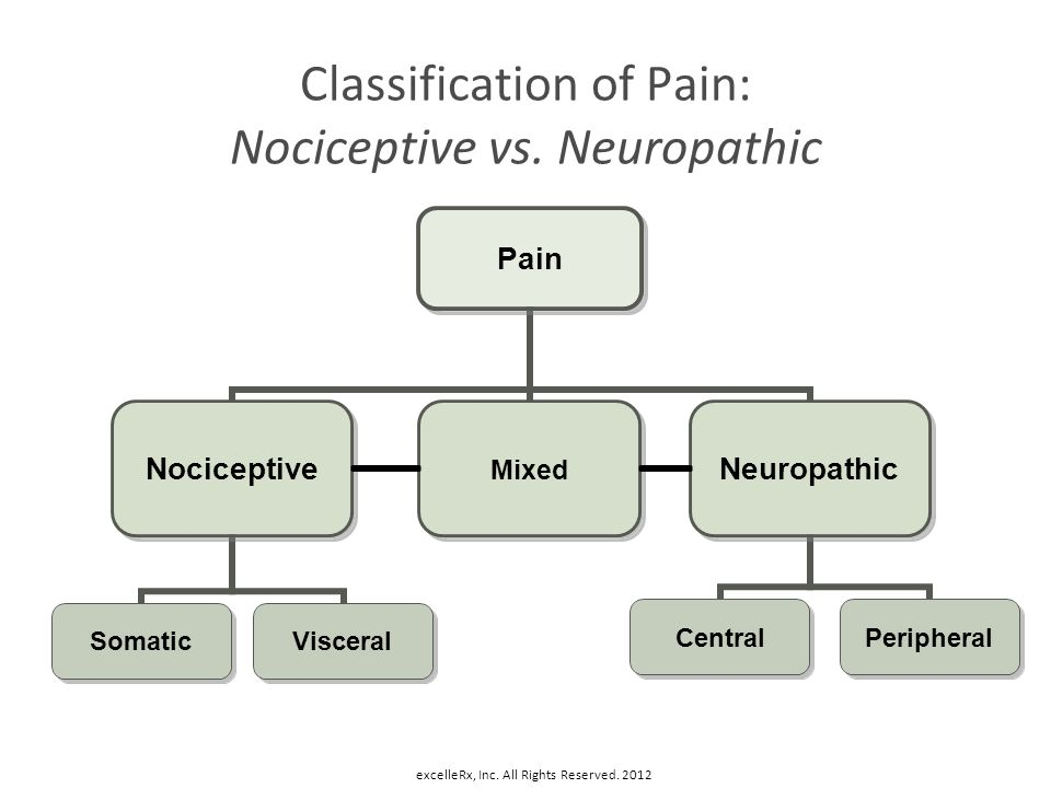 Classification of Pain: Nociceptive vs. Neuropathic