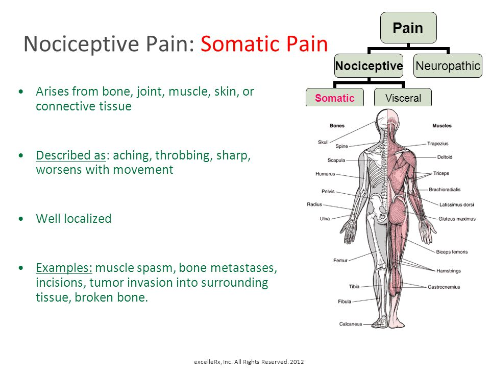 Nociceptive Pain: Somatic Pain