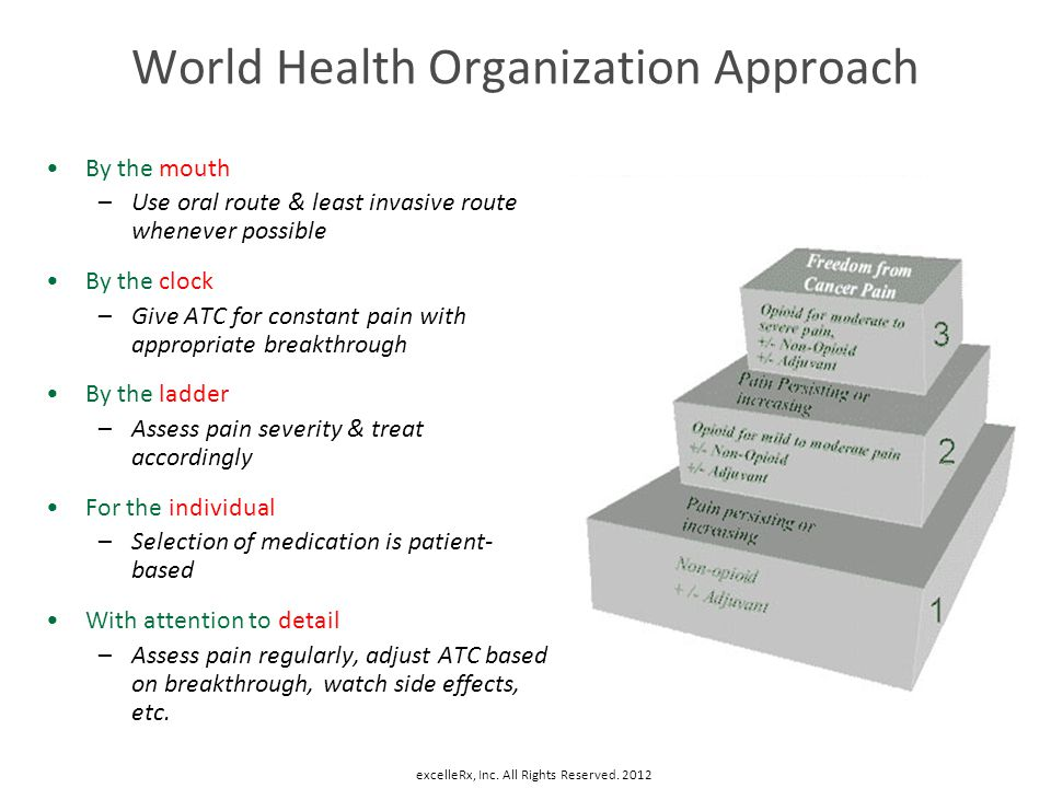 World Health Organization Approach