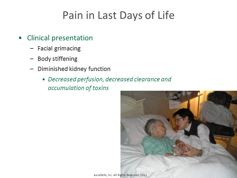 Pain in Last Days of Life