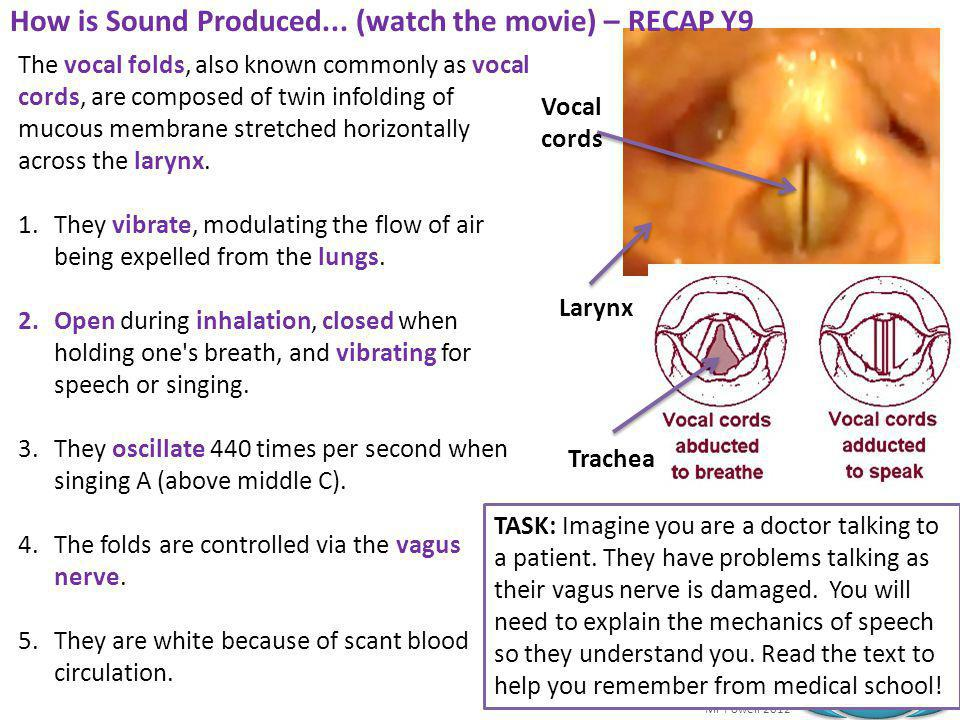 How is Sound Produced... (watch the movie) – RECAP Y9