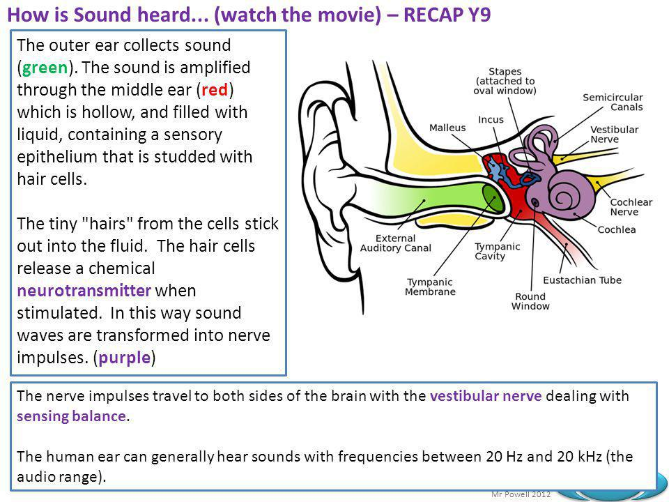 How is Sound heard... (watch the movie) – RECAP Y9