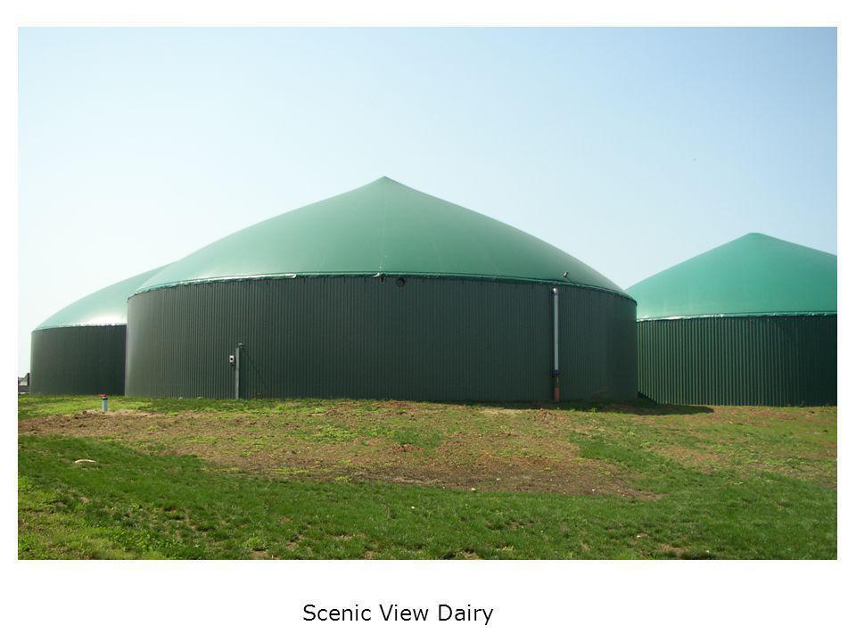 Scenic View Dairy