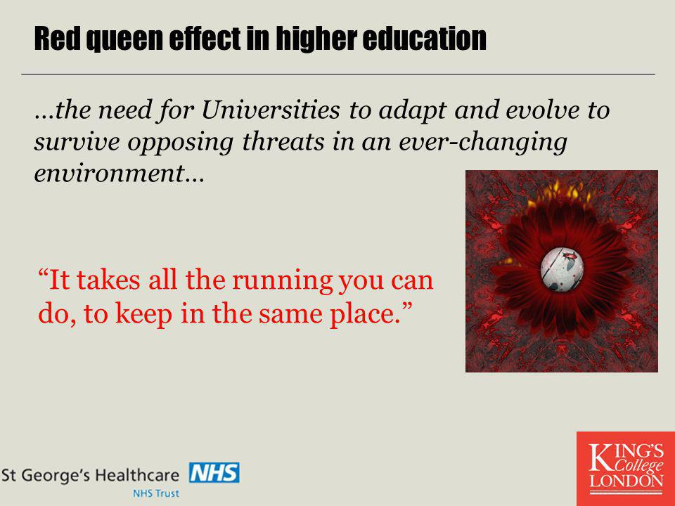 Red queen effect in higher education