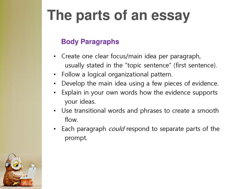 How many sentences per paragraph in an essay