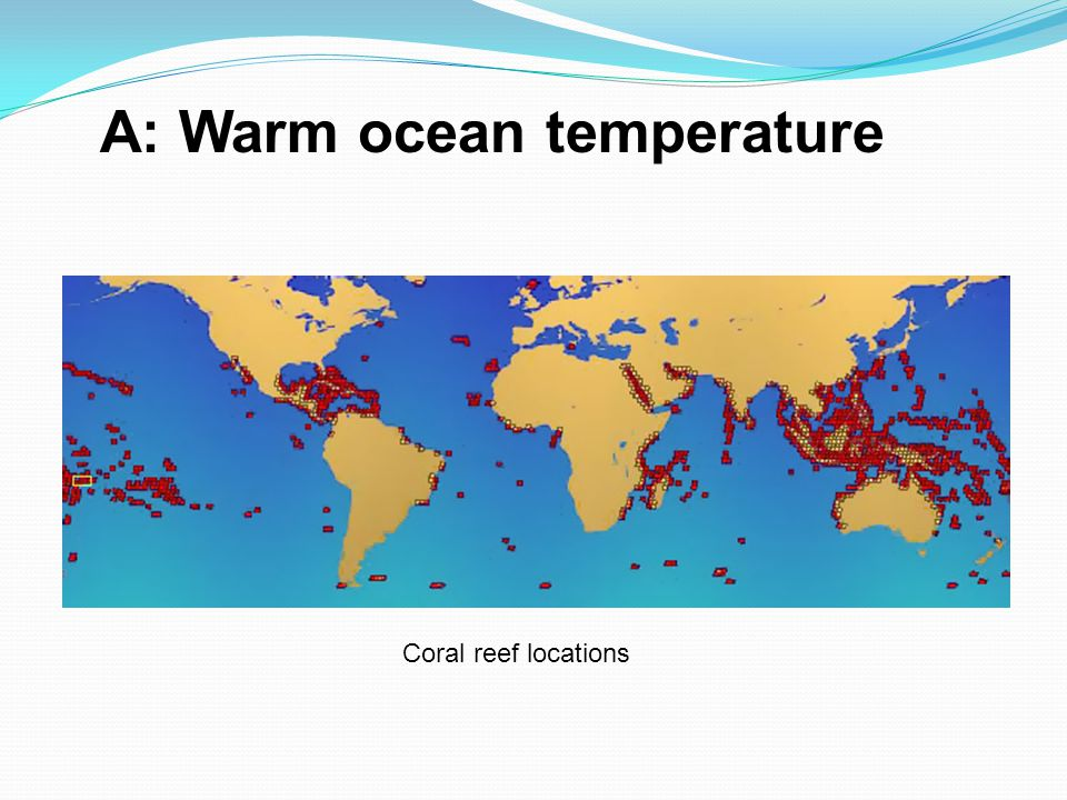 A: Warm ocean temperature