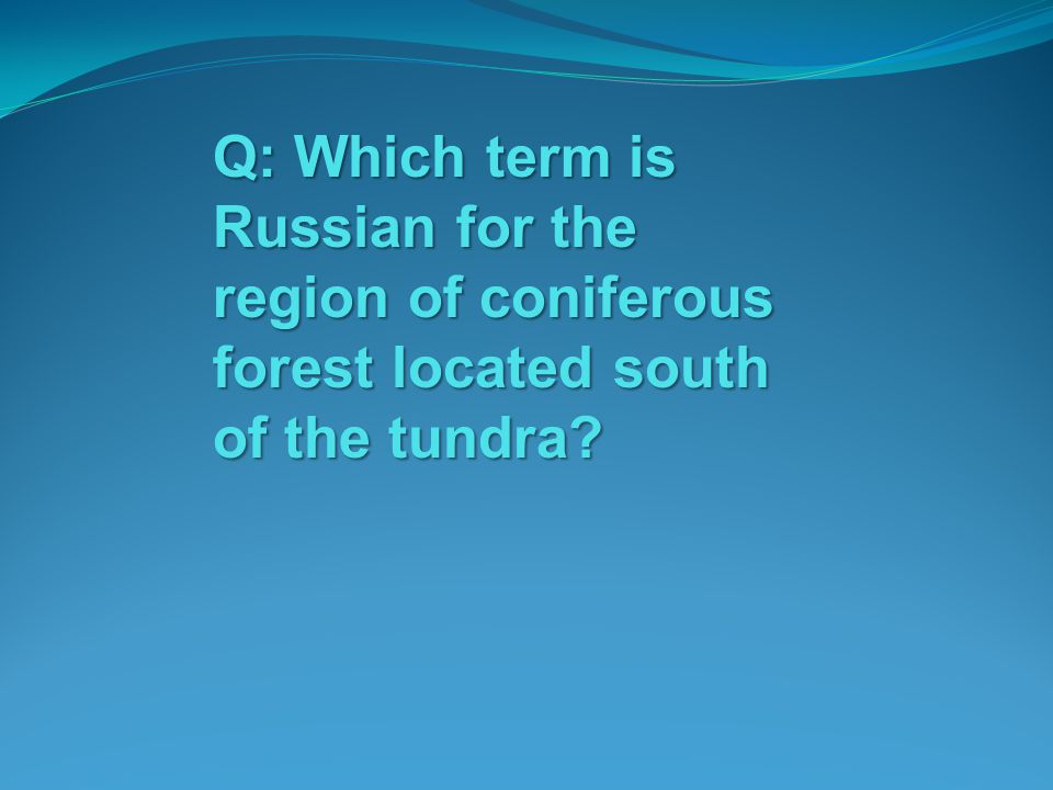 Q: Which term is Russian for the region of coniferous forest located south of the tundra