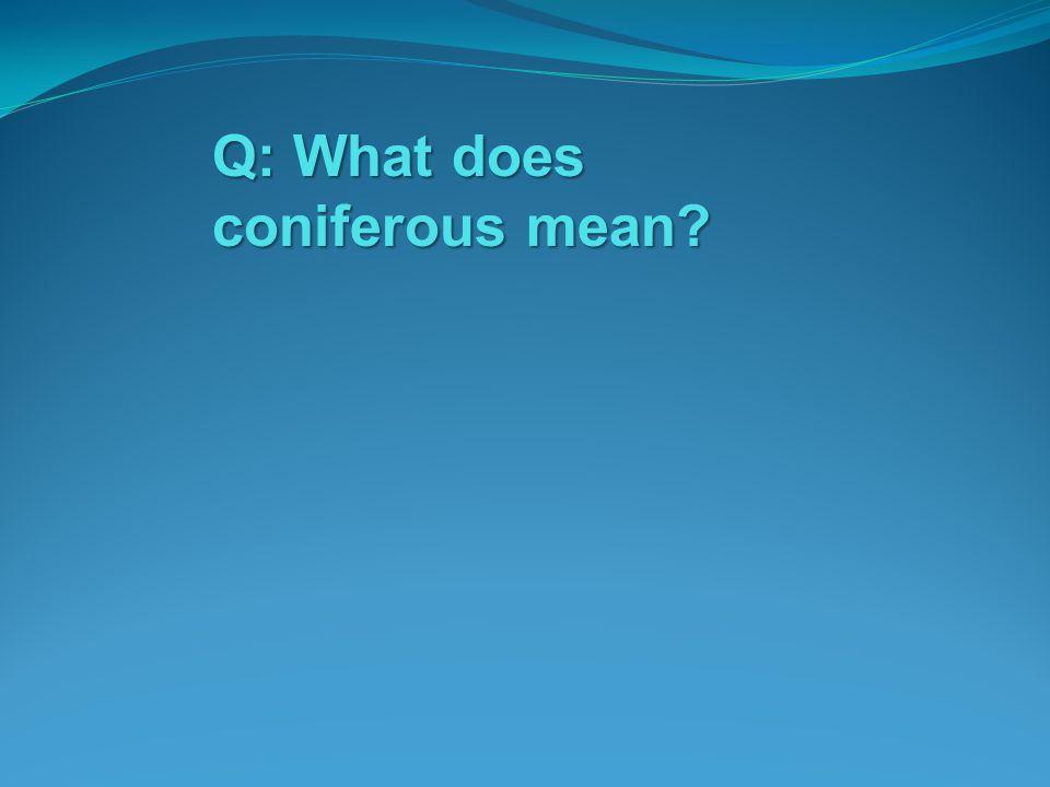 Q: What does coniferous mean