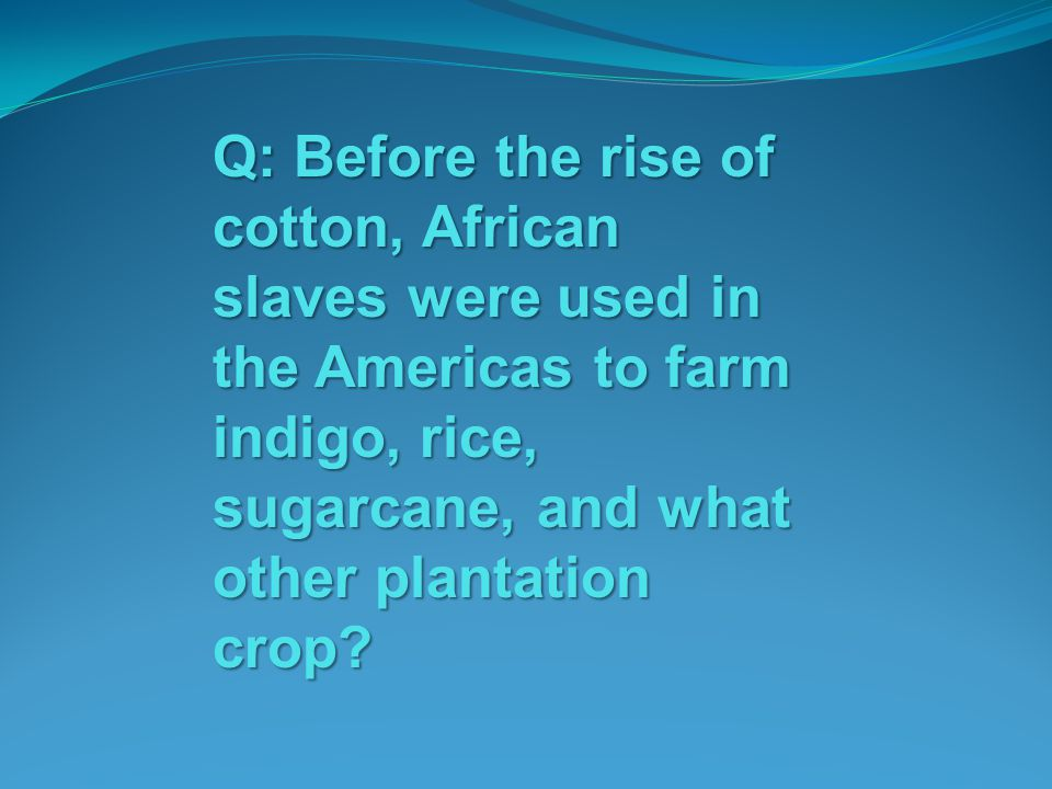 Q: Before the rise of cotton, African slaves were used in the Americas to farm indigo, rice, sugarcane, and what other plantation crop