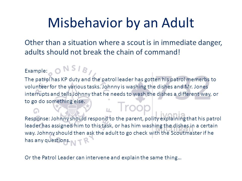 Misbehavior by an Adult