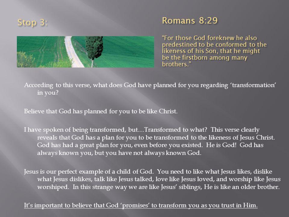 Stop 3: Romans 8:29.