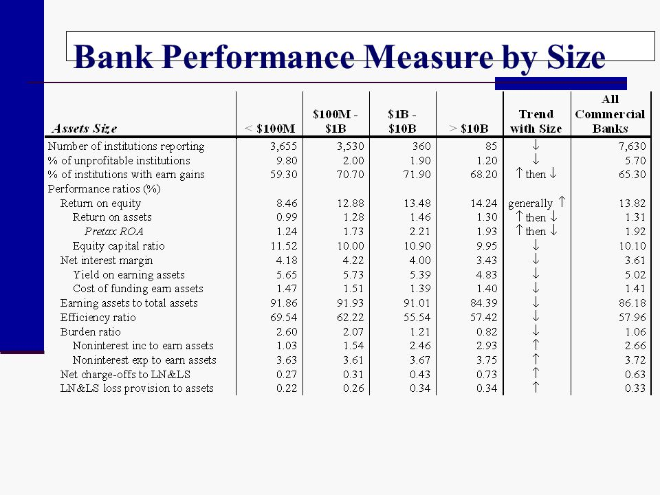 Bank Performance Measure by Size