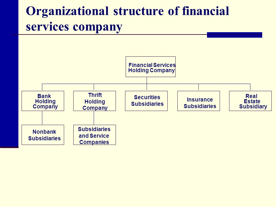 Organizational structure of financial services company