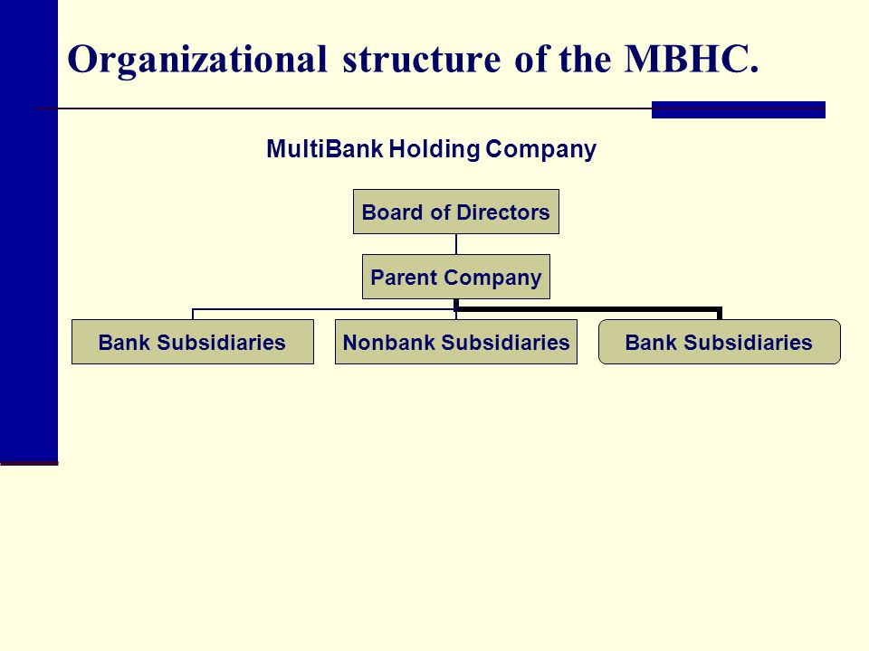 Organizational structure of the MBHC.
