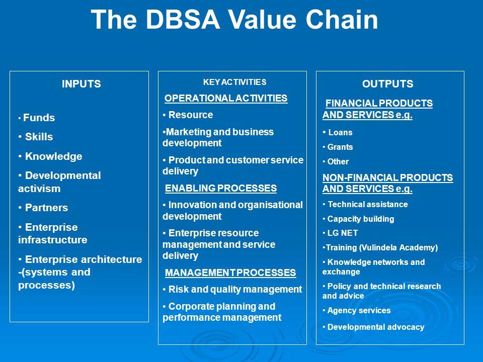 The DBSA Value Chain INPUTS Skills Knowledge Developmental activism