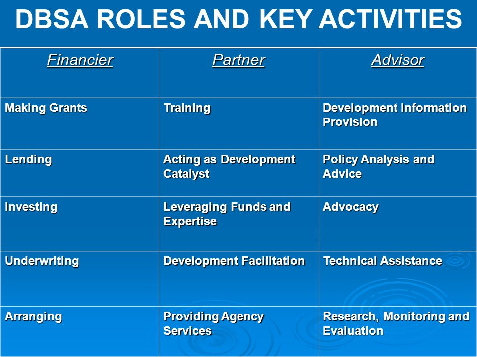 DBSA ROLES AND KEY ACTIVITIES
