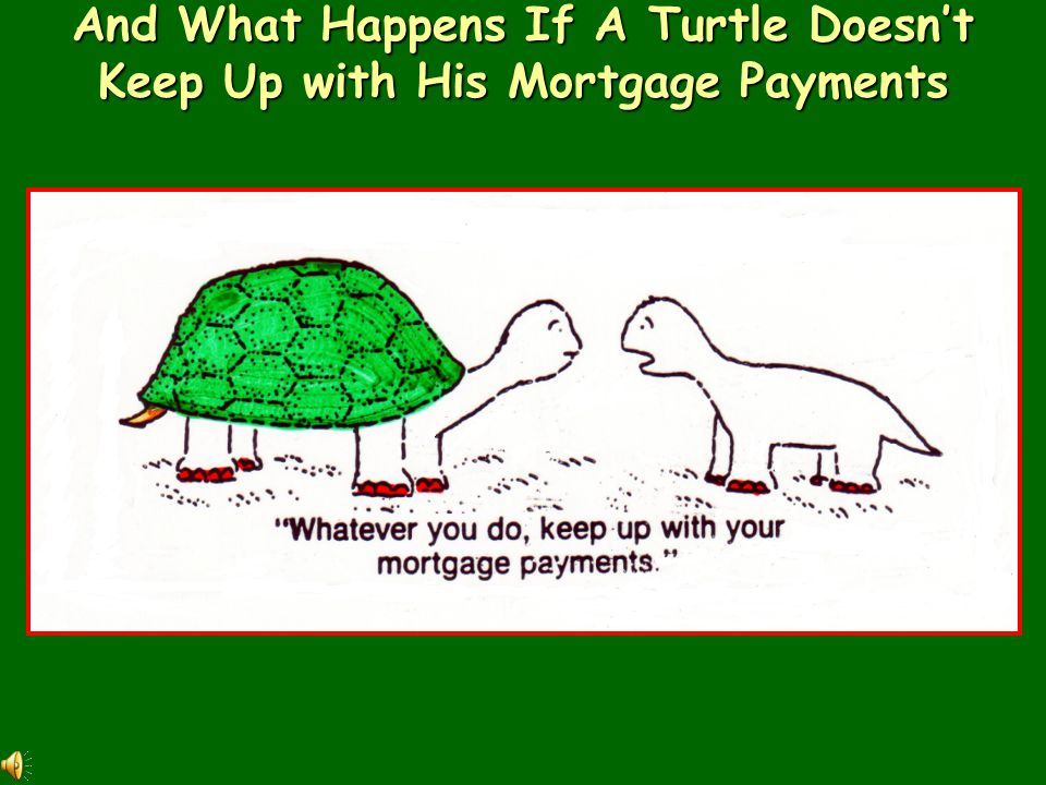 And What Happens If A Turtle Doesn't Keep Up with His Mortgage Payments