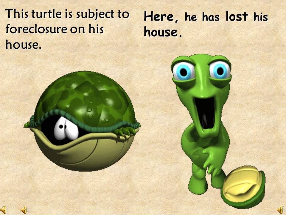 This turtle is subject to foreclosure on his house.