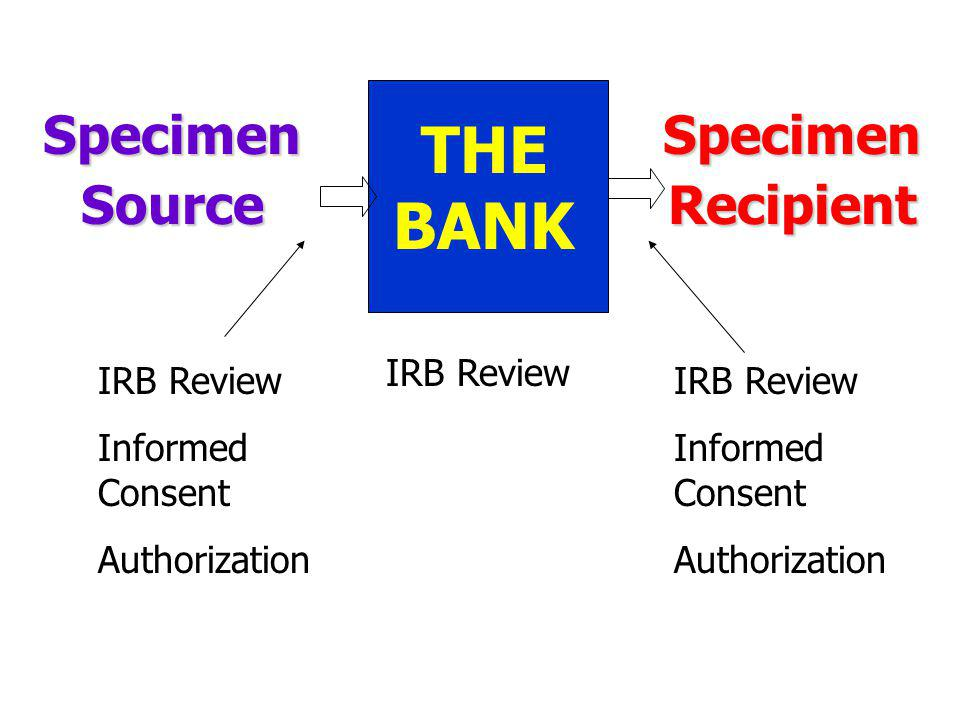 THE BANK Specimen Source Specimen Recipient IRB Review IRB Review