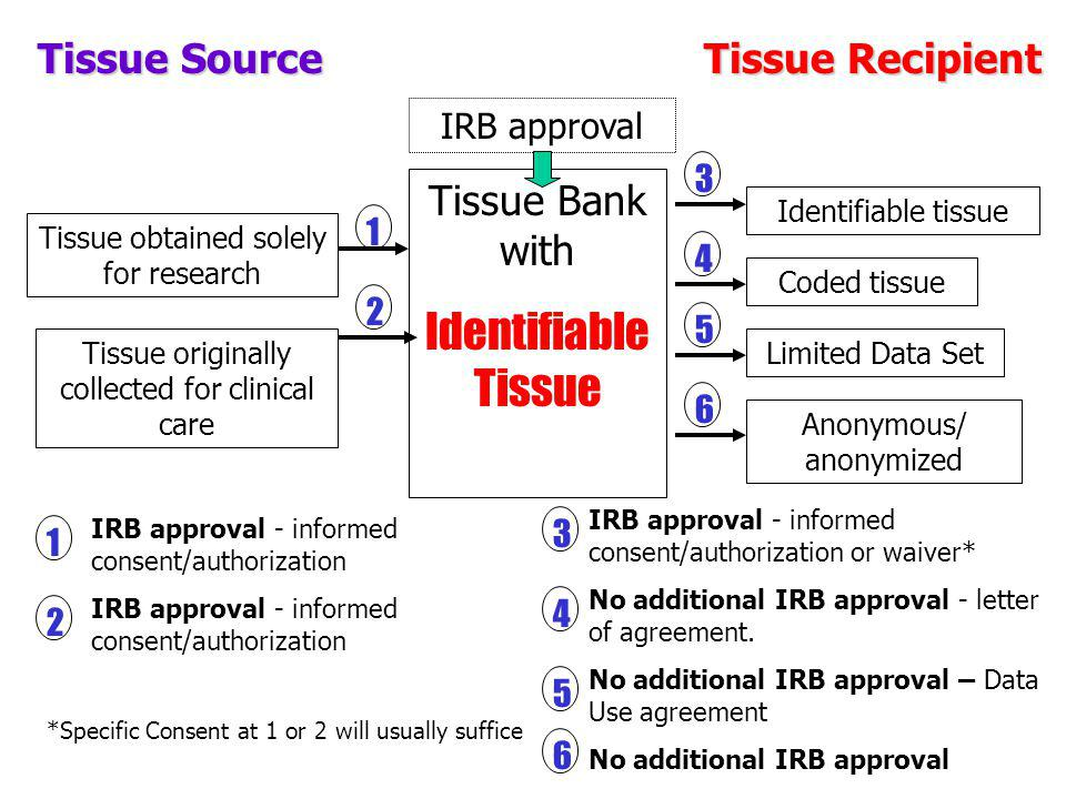 Identifiable Tissue Tissue Source Tissue Recipient Tissue Bank with