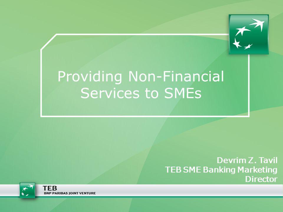 Providing Non-Financial Services to SMEs