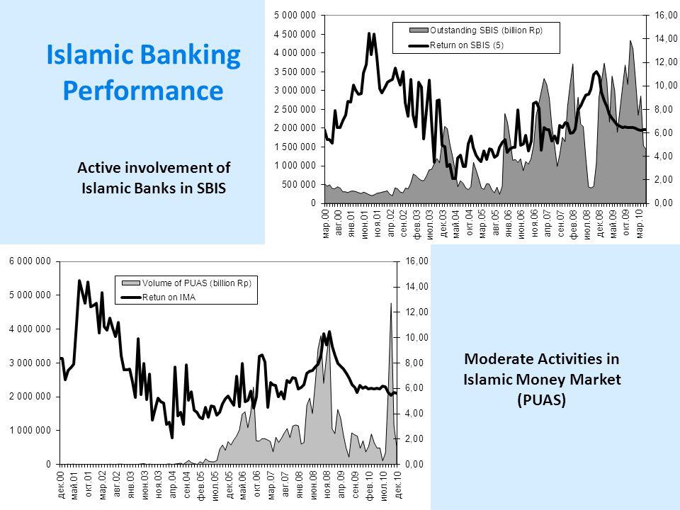 Islamic Banking Performance