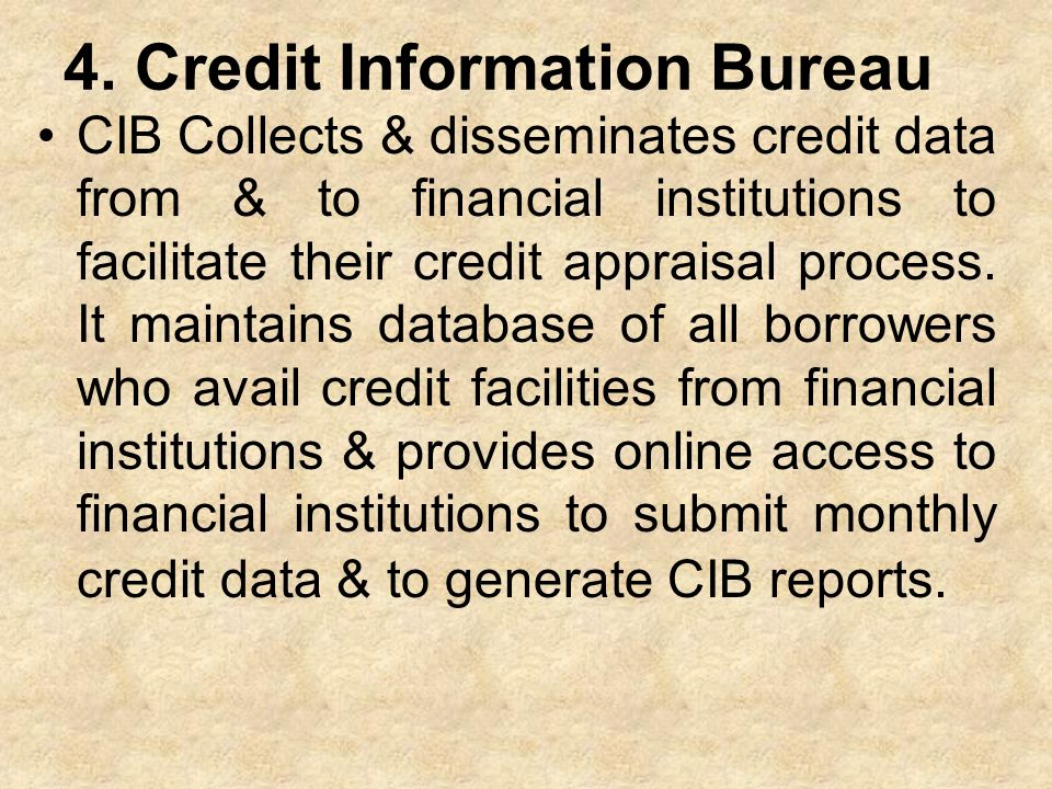4. Credit Information Bureau