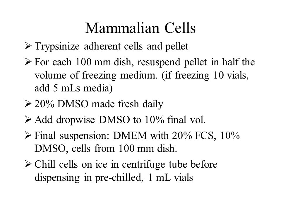 Mammalian Cells Trypsinize adherent cells and pellet