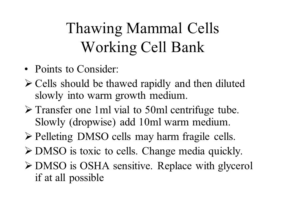 Thawing Mammal Cells Working Cell Bank