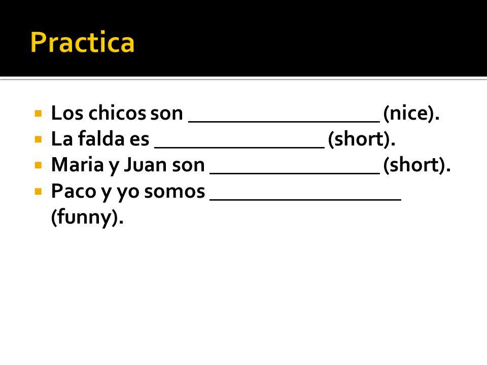 Practica Los chicos son __________________ (nice).