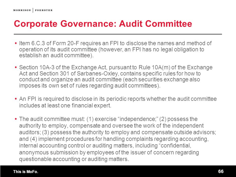 Corporate Governance: Audit Committee