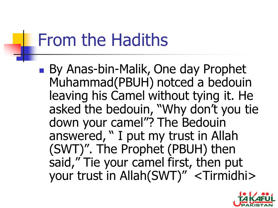 From the Hadiths