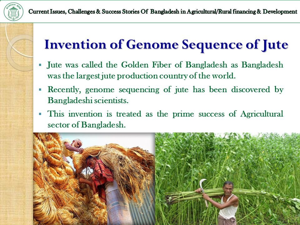 Invention of Genome Sequence of Jute