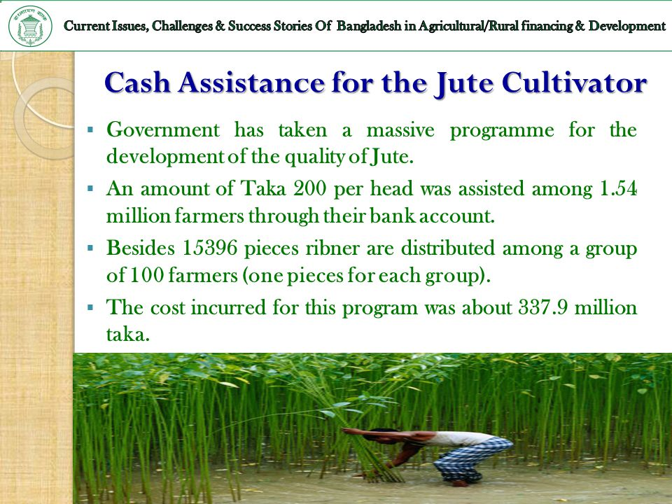 Cash Assistance for the Jute Cultivator