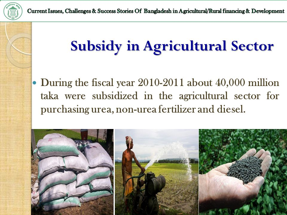 Subsidy in Agricultural Sector