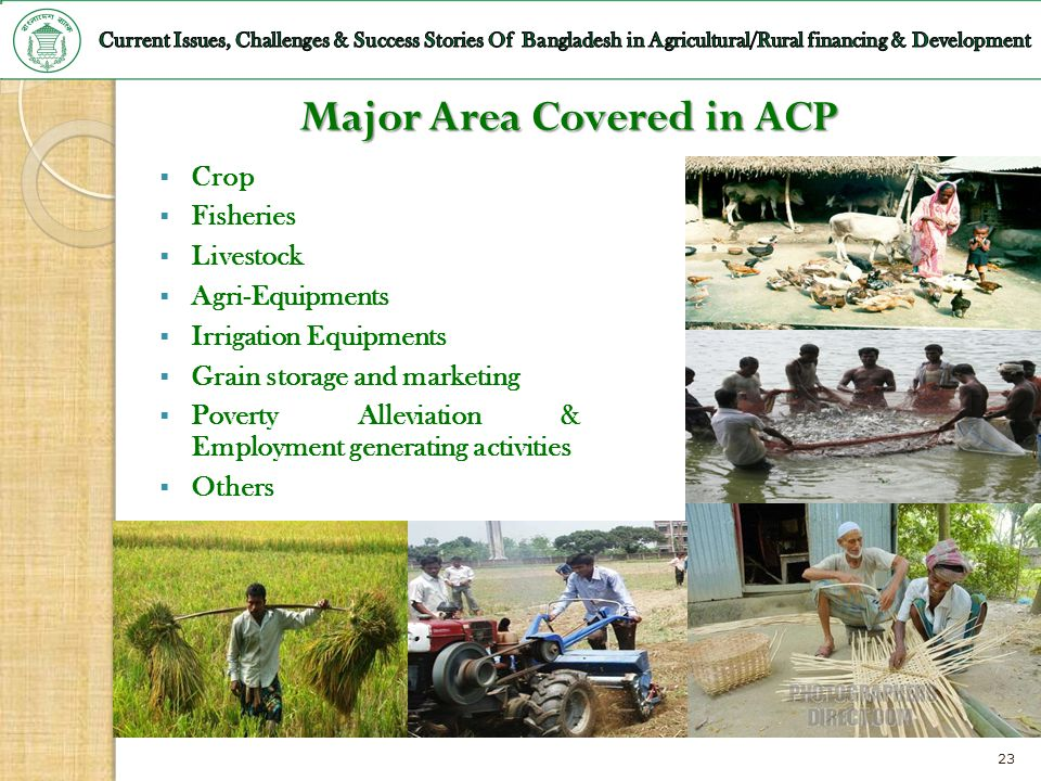 Major Area Covered in ACP