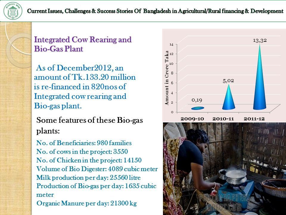 Integrated Cow Rearing and Bio-Gas Plant