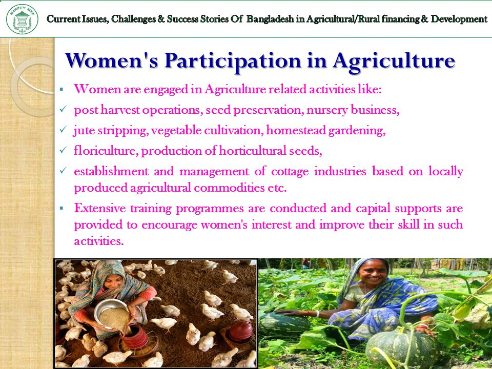 Women s Participation in Agriculture